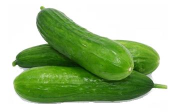 Cucumbers clipart #15