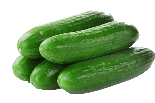 Download Free png cucumbers png file.