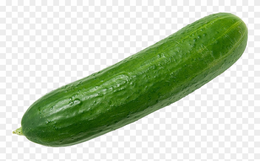 Cucumbers Png Clipart.