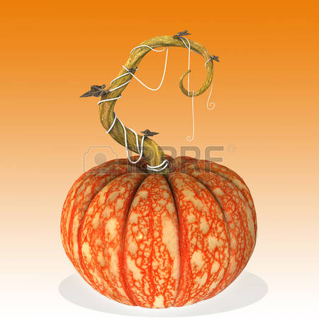 512 Cucurbit Stock Vector Illustration And Royalty Free Cucurbit.
