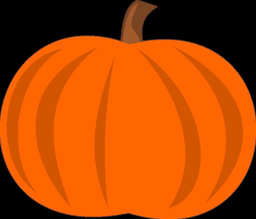 Free vector graphic: Calabash, Squash, Cucurbit, Gourd.