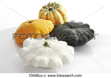 Stock Images of Pumpkin Gorgonzola (Cucurbita pepo) and Pattypan.
