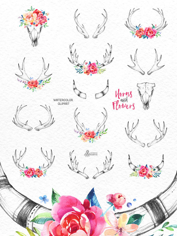 Horns & Flowers. 14 Watercolor clipart, floral, hand drawing.