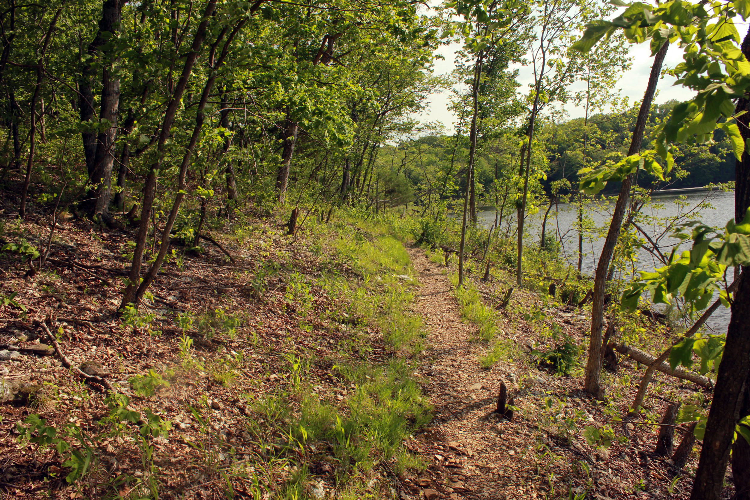 Trail by the lake at Cuivre River State Park, Missouri.