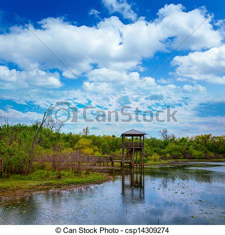 Picture of White Lake at Cullinan Park in sugarland Texas.