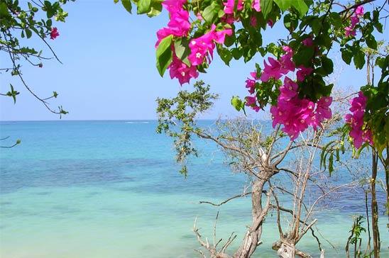 Jamaica EscapesJamaica EscapesCulloden Cove.