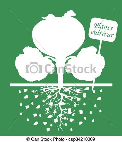 Cultivar clipart.