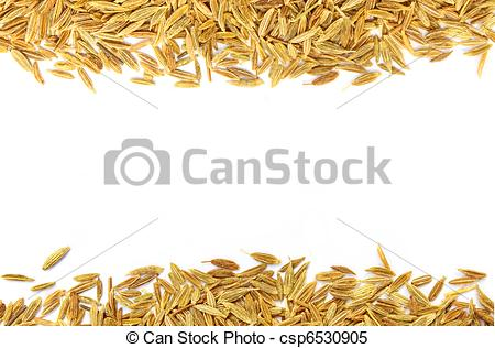 Stock Images of Decorative cumin seeds over white background.