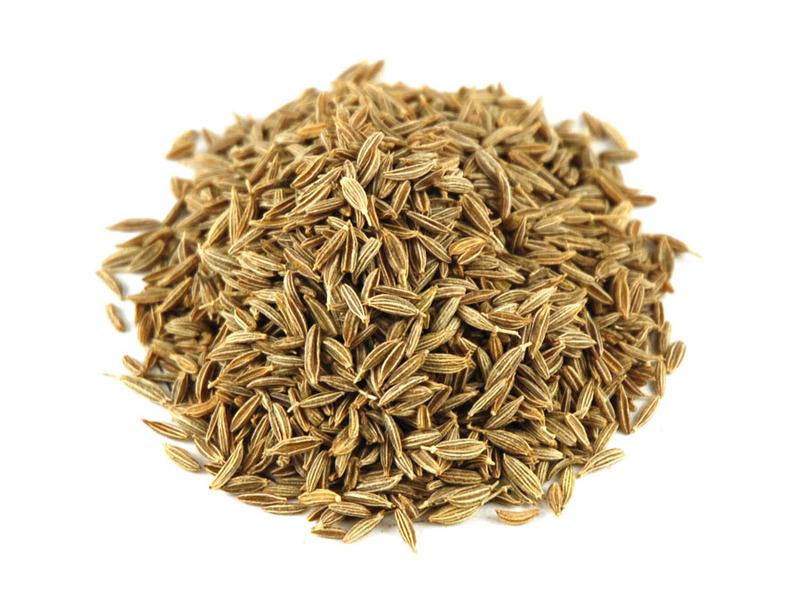 Cumin seeds images.