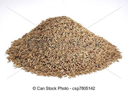 Stock Photo of mountain of asian spice cumin seeds csp7805142.