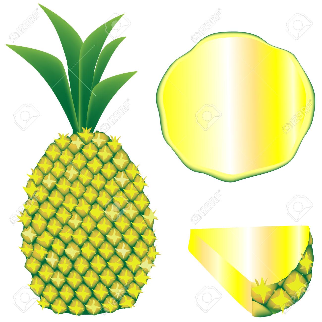 Textured Illustrazione Vettoriale Di Un Intero Ananas, Fetta, E.