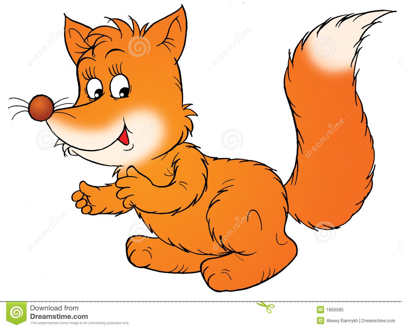 Fox Royalty Free Stock Photo.