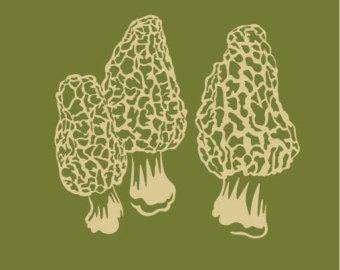 Mushroom hunting.