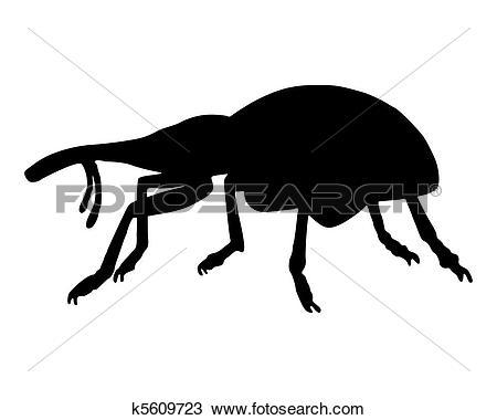 Clipart of Weevil (Curculionidae) k5609723.