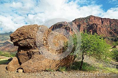 Toad Rock Formation. Quebrada De Las Conchas. Stock Image.