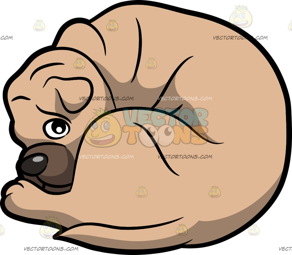 A Shar Pei Dog Curled Up On The Floor Cartoon Clipart.