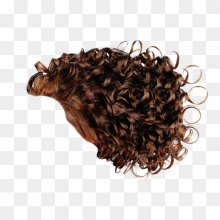 Free Curly Hair PNG Images.