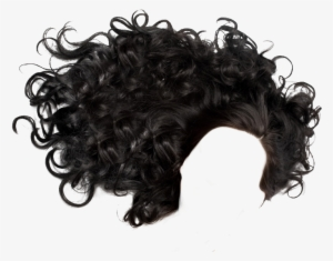 Curly Hair PNG, Transparent Curly Hair PNG Image Free Download.