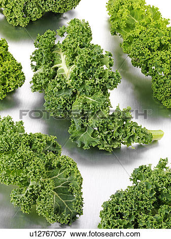 Picture of Curly Kale Leaves u12767057.