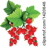 Clipart of Cartoon Black Currant Berries and Leaves.