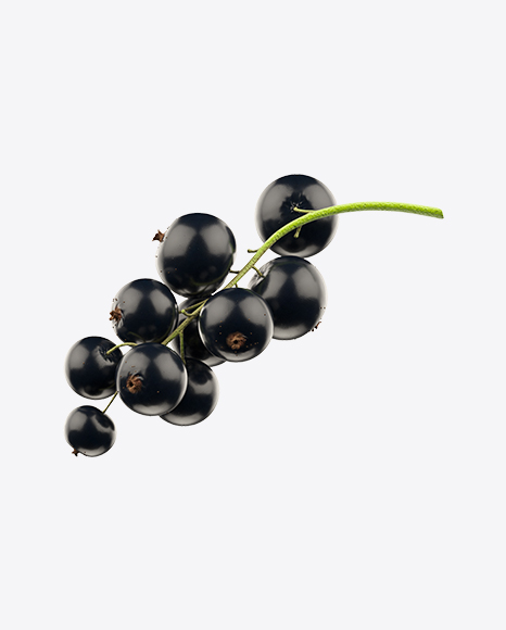 Download Black Currant Transparent PNG on Yellow Images 360°.