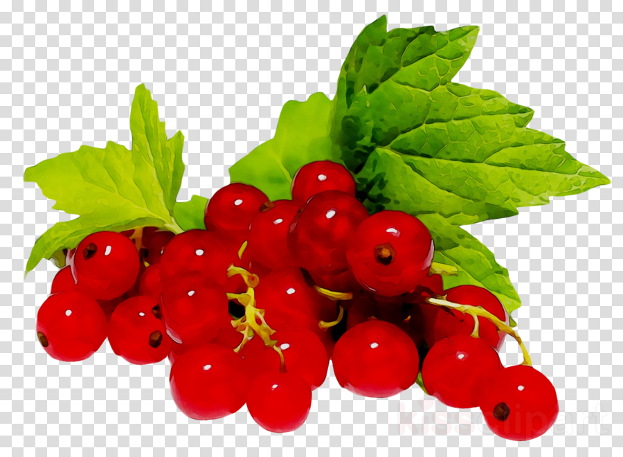 Strawberry Cartoontransparent png image & clipart free download.