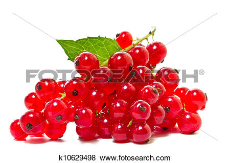 Pictures of Red currants on a white background. k10629498.