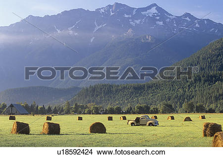 Stock Photo of Vintage truck in hay field with round bales and.