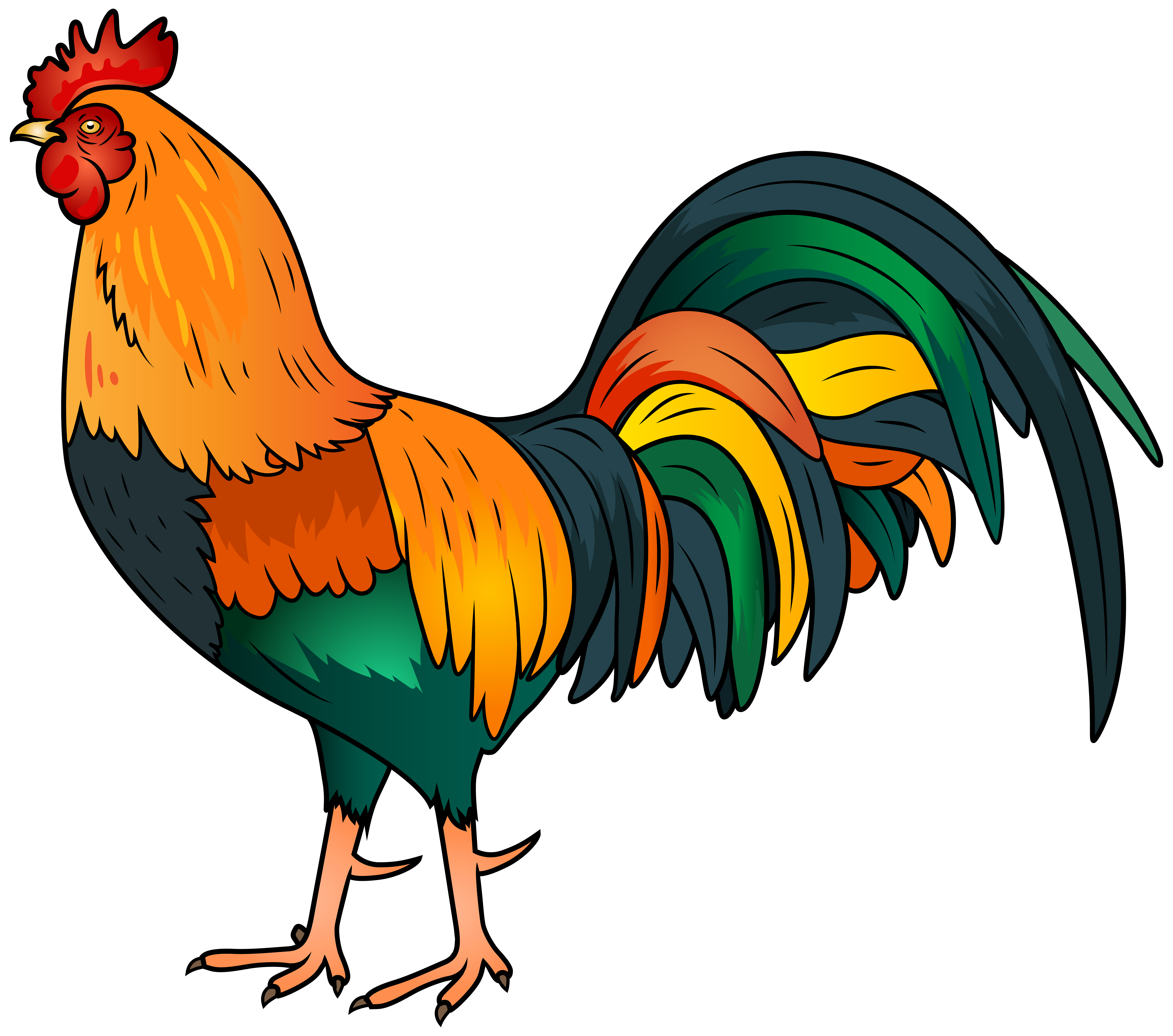 Rooster Clipart Images.