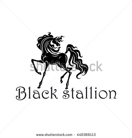 Young Andalusian Colt Black Silhouette With Elegant Curved Neck.