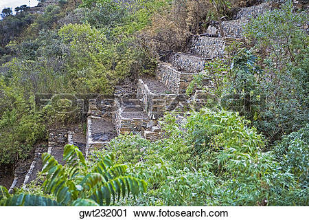 Stock Photography of Steps of an old ruin, Choquequirao, Inca.