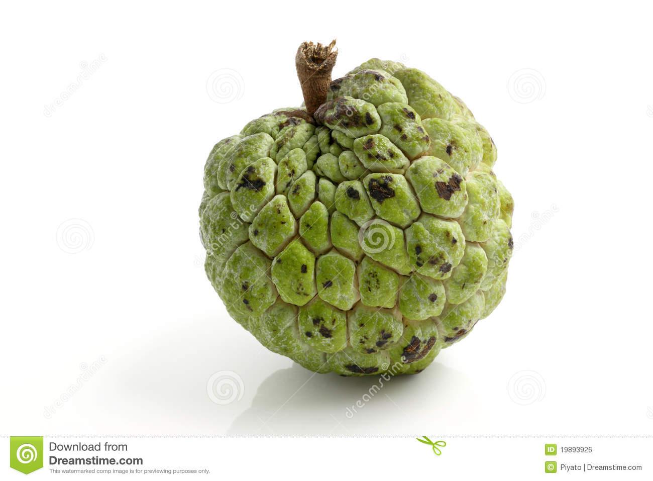 Clipart Of Custard Apple.