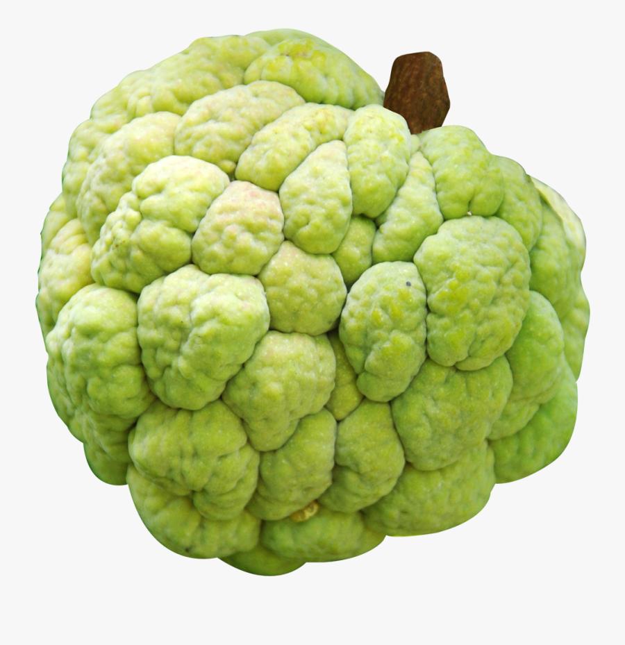 Custard Apple Png Image.