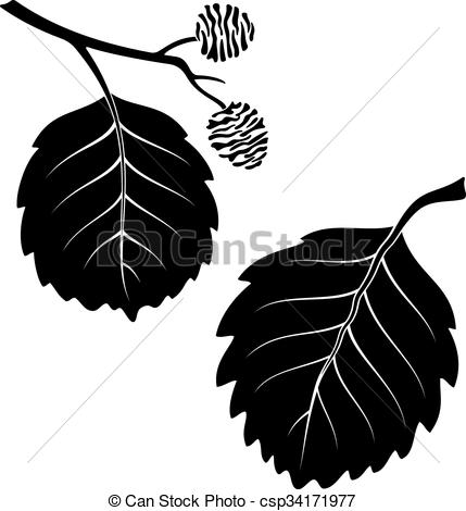 Vectors Illustration of Alder Leaves, Pictogram Set.