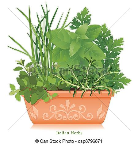 Vector Clip Art of Italian Herb Garden, Clay Flowerpot.