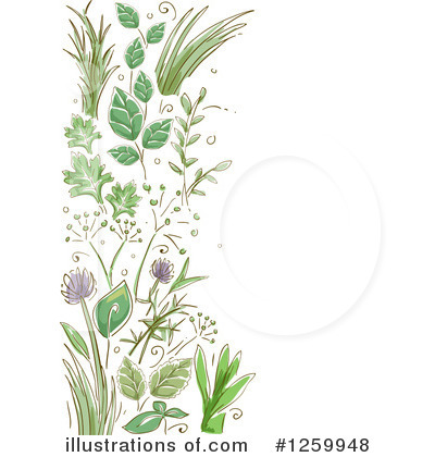 Free herb clipart.
