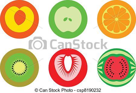 EPS Vector of Kiwi fruit, contours.