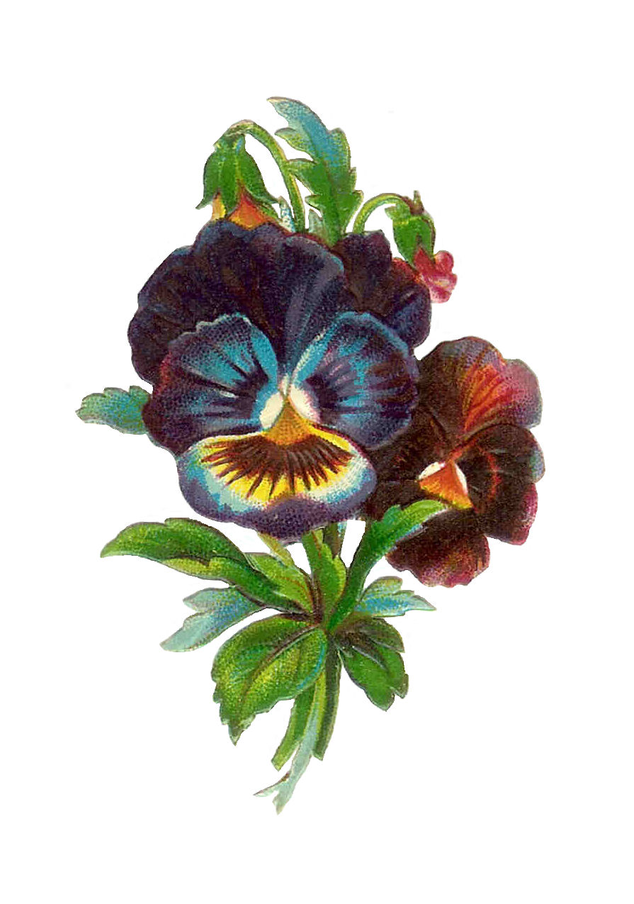 Free clipart images of die cut flowers.