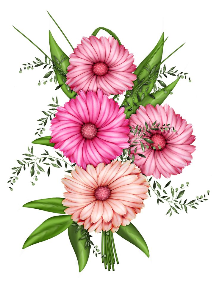 1000+ images about Flower clipart on Pinterest.