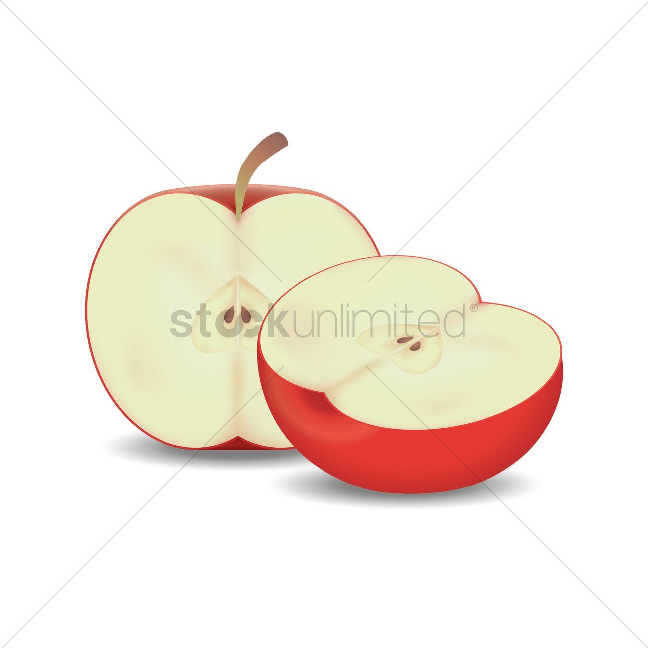 Apple cut into half Vector Image.