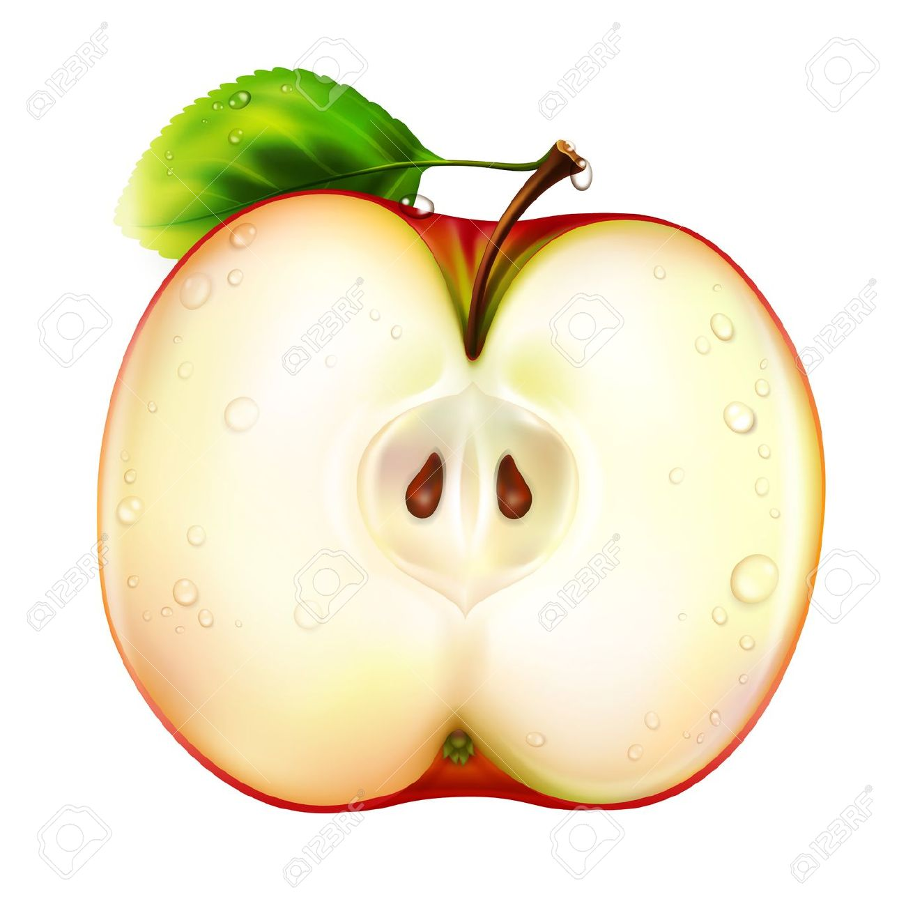 Apple cut in half clipart no background.
