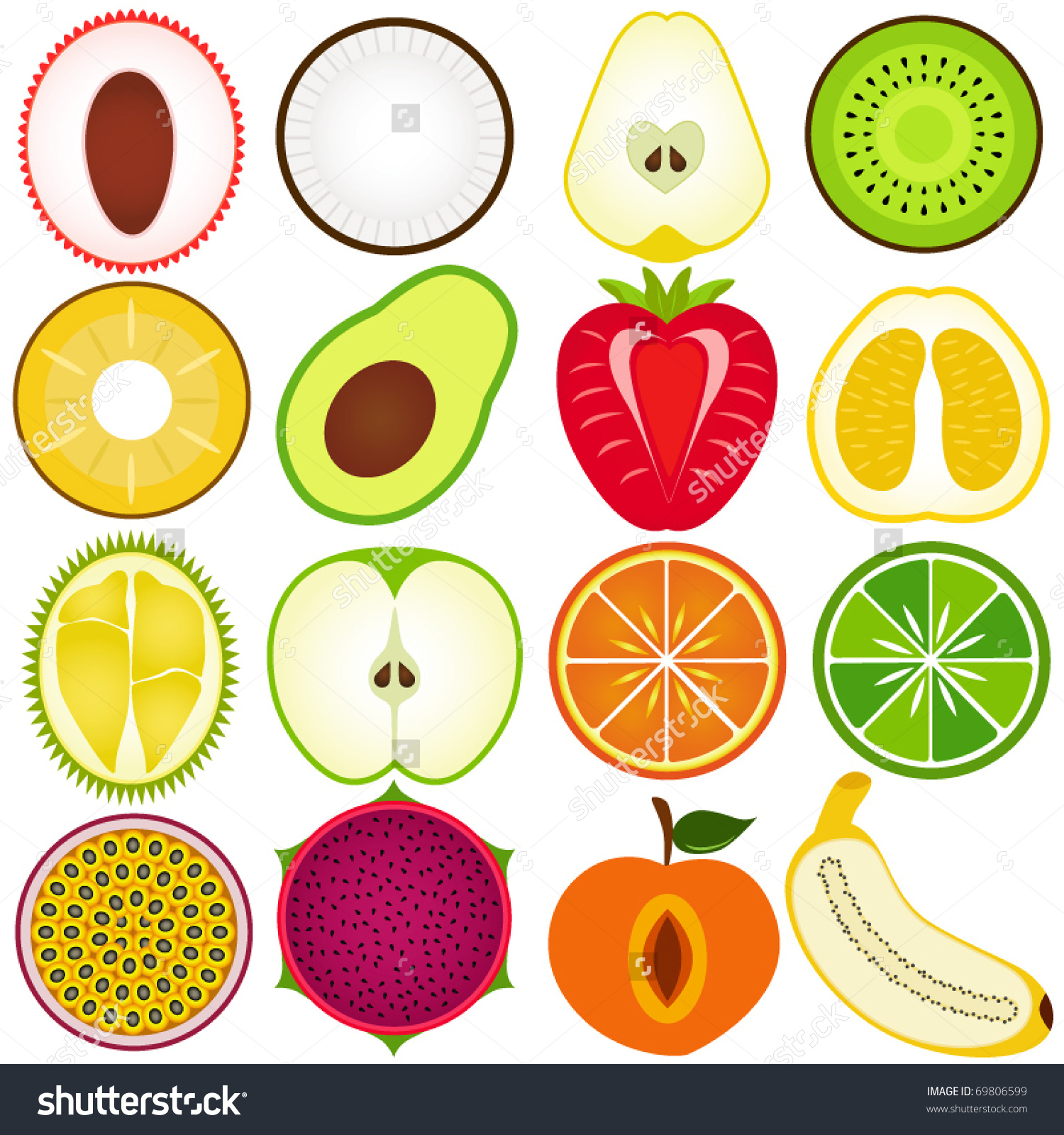 Vector Fresh Fruit Vegetable Cut Half Stock Vector 69806599.