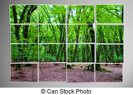 Photo cut into pieces with nature concept Illustrations and Clip.