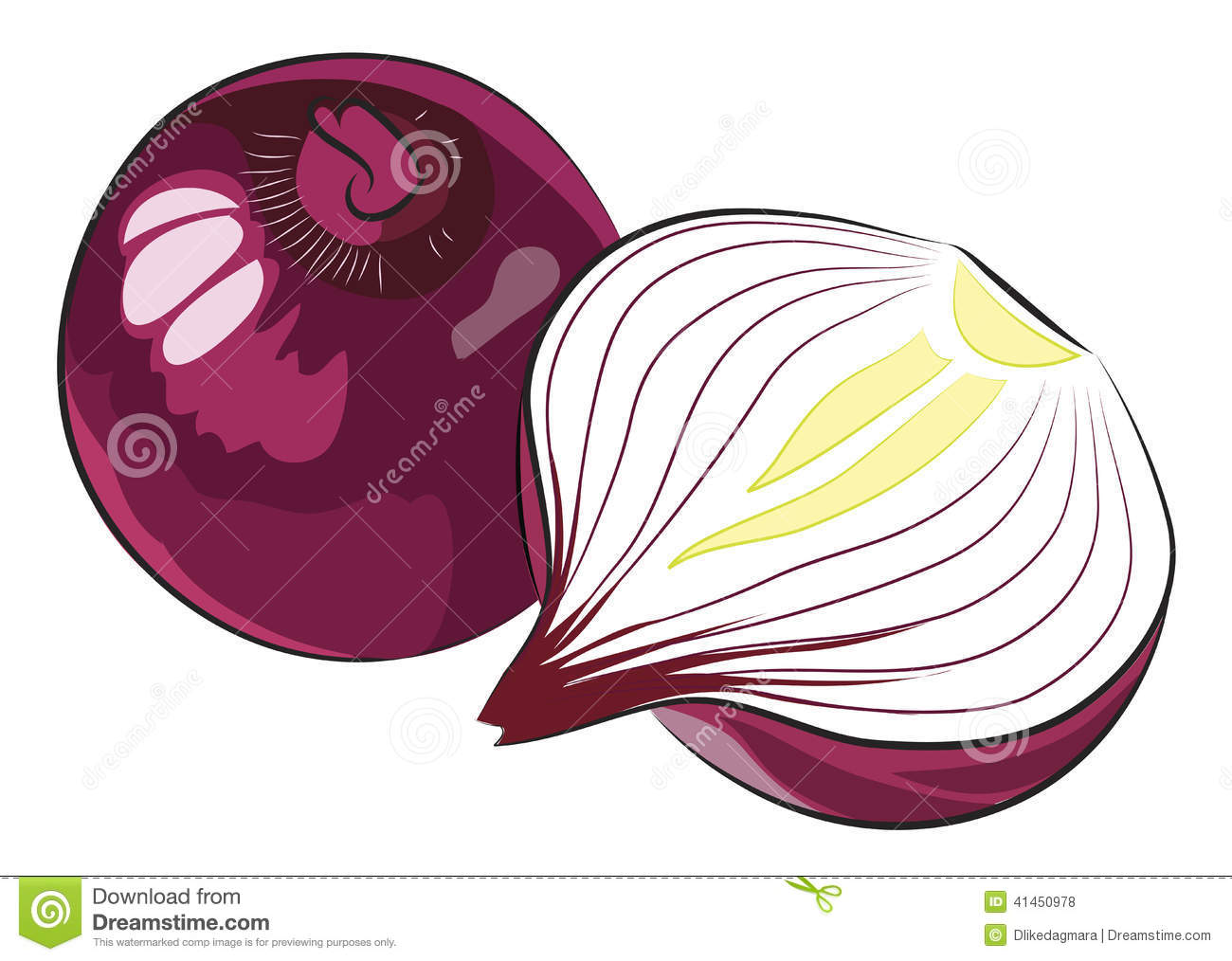 Red Onion Cut Stock Illustrations.