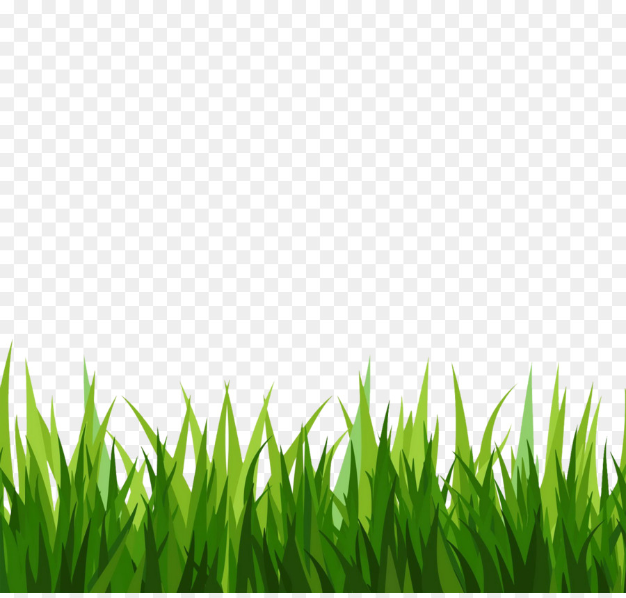 Grass clipart cut out, Grass cut out Transparent FREE for.