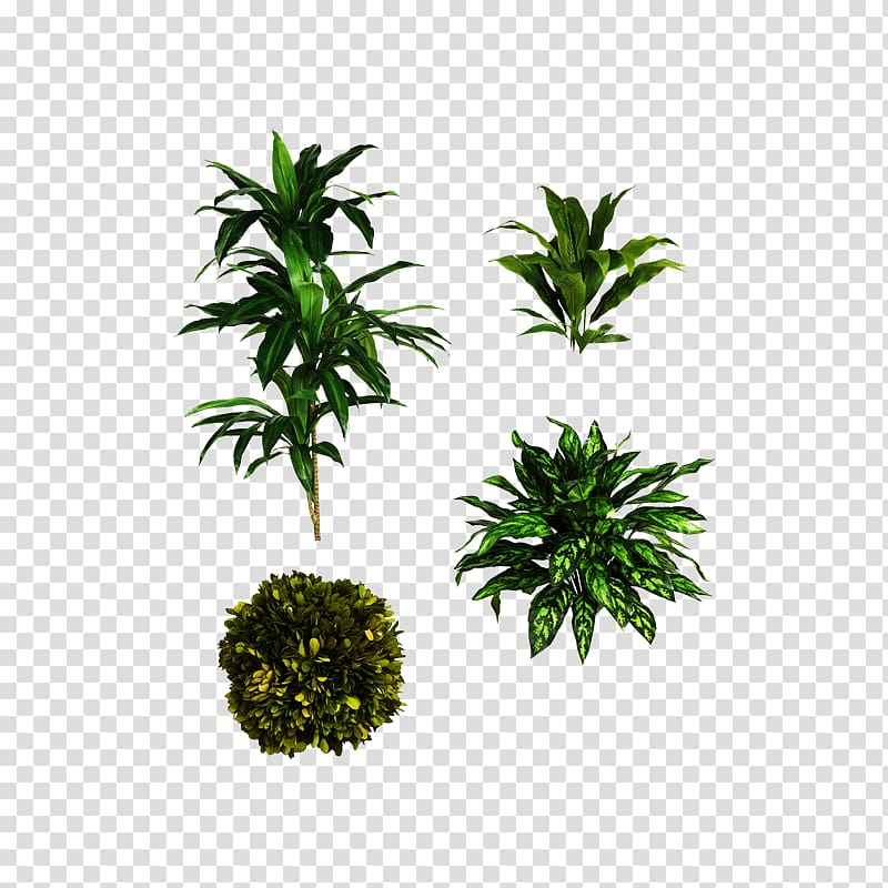 Green leafed plants collage illustration, Computer file.