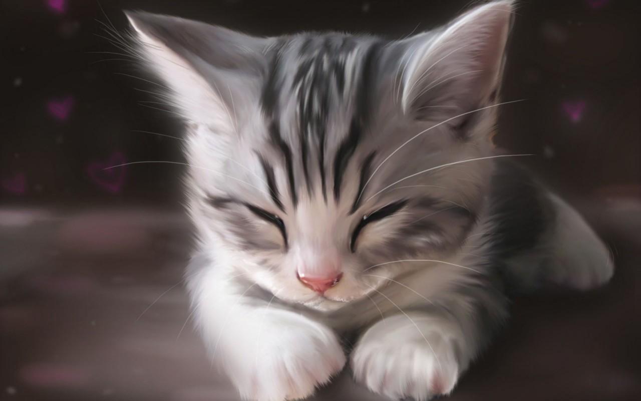 Cute Animal Wallpaper Tumblr Clipart.