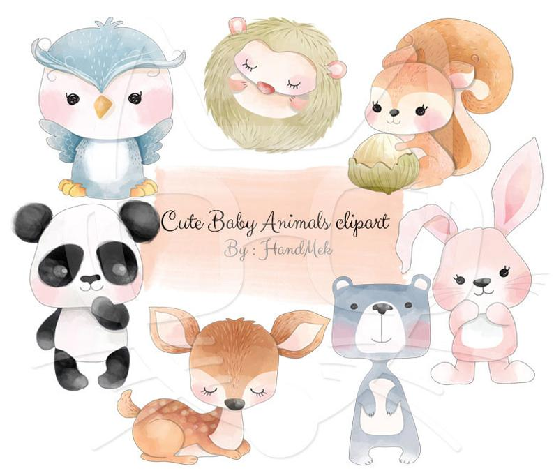 cute baby animals Clip Art, animals water color clipart. Instant  Download,PNG file.