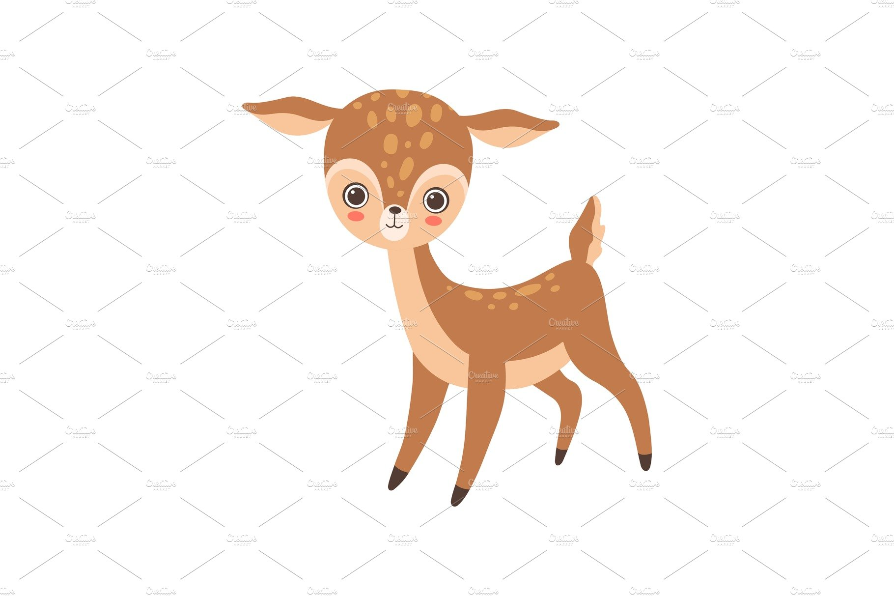 Cute Baby Deer, Lovely Forest Fawn.