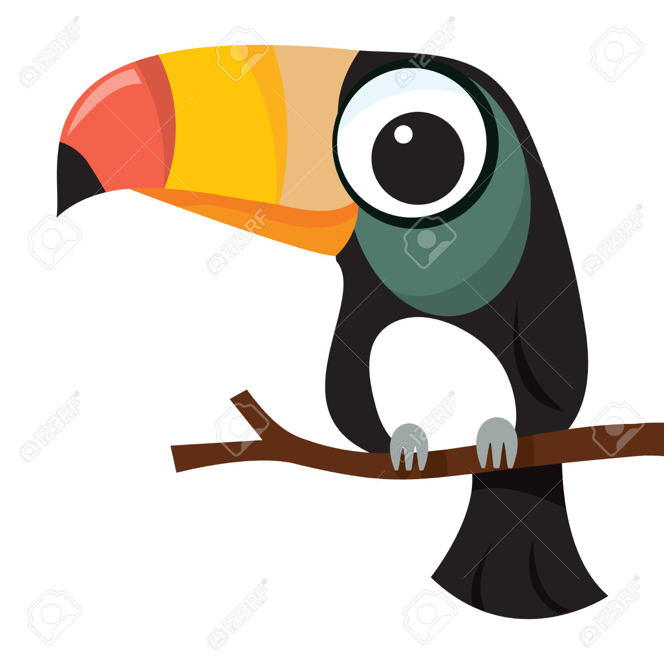 Showing post & media for Toucan parrot cartoon.